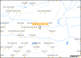 map of Bagienica