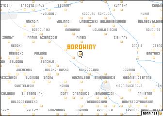 map of Borowiny