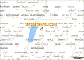 map of Brzostek Policzko