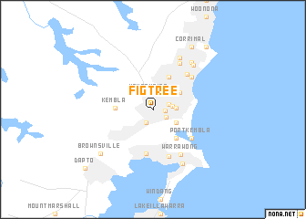 map of Figtree
