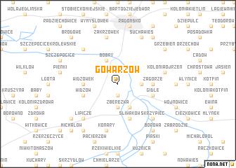 map of Gowarzów