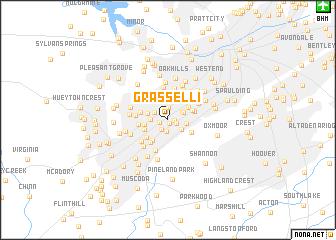 map of Grasselli