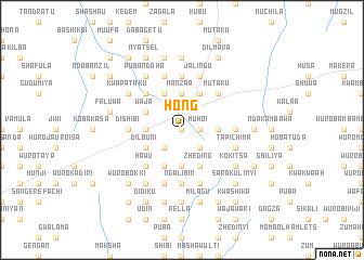Hong (Nigeria) map - nona net