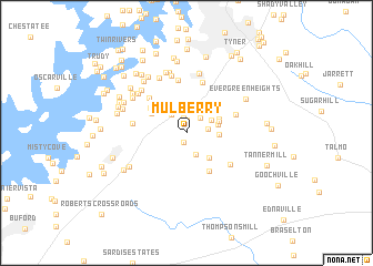 map of Mulberry