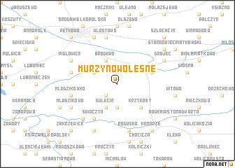 map of Murzynowo Leśne