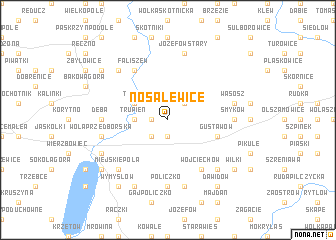 map of Nosalewice