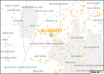 map of Olive West