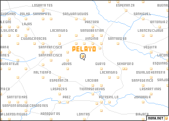 map of Pelayo