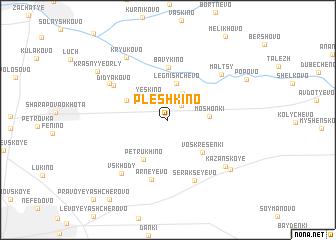 map of Pleshkino