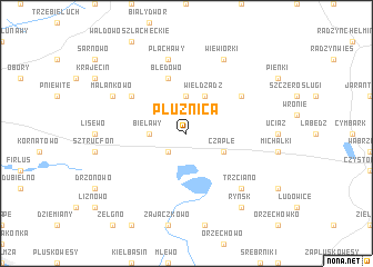 map of Płużnica