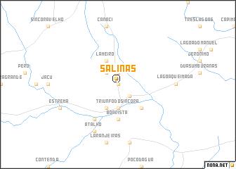 map of Salinas