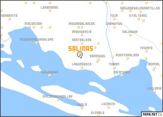Salinas Mexico Map.Salinas Mexico Map Nona Net