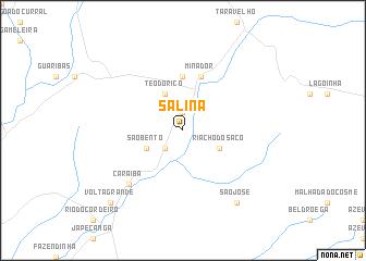 map of Salina