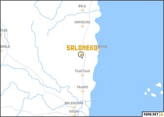 map of Salomeko