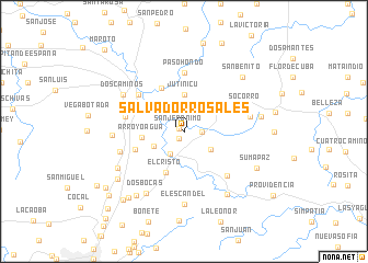 map of Salvador Rosales