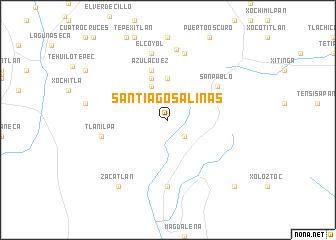 Salinas Mexico Map.Santiago Salinas Mexico Map Nona Net