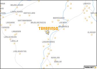 map of Tamarindo