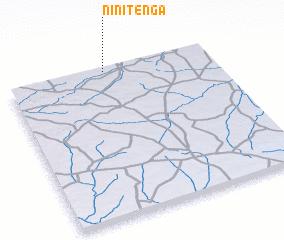 3d view of Ninitenga