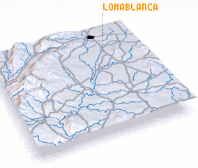 3d view of Loma Blanca