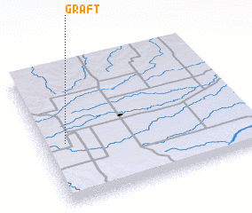 3d view of Graft
