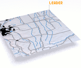 3d view of Leader