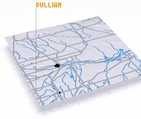 3d view of Pulliam