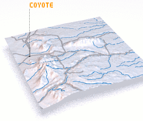 3d view of Coyote