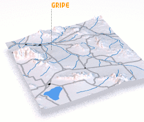 3d view of Gripe