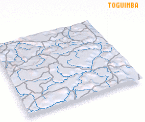 3d view of Toguimba