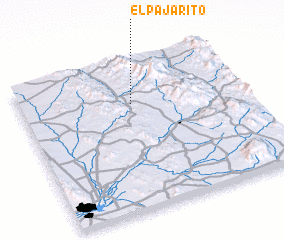 3d view of El Pajarito