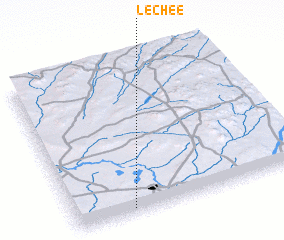 3d view of Lechee