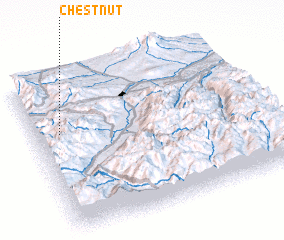 3d view of Chestnut