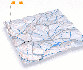 3d view of Willow