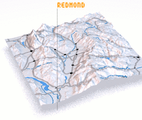 3d view of Redmond