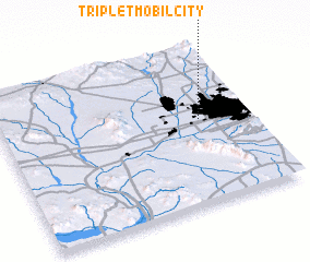 3d view of Triple T Mobilcity