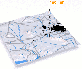 3d view of Cashion