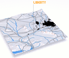 3d view of Liberty