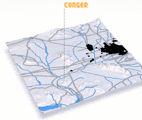 3d view of Conger