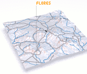 3d view of Flores