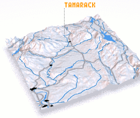 3d view of Tamarack