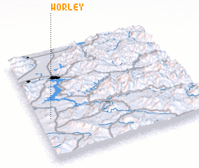 3d view of Worley