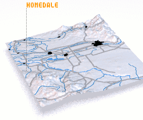 3d view of Homedale