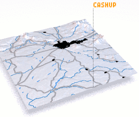 3d view of Cashup