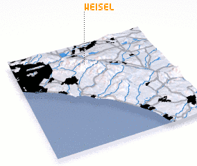 3d view of Weisel