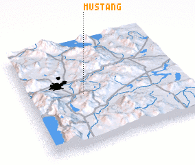 3d view of Mustang