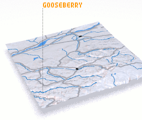 3d view of Gooseberry