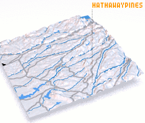 3d view of Hathaway Pines