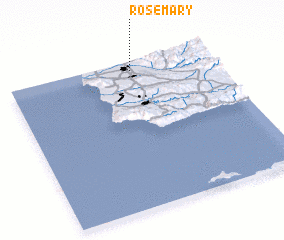 3d view of Rosemary