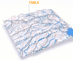 3d view of Towle