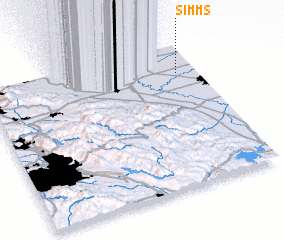 3d view of Simms